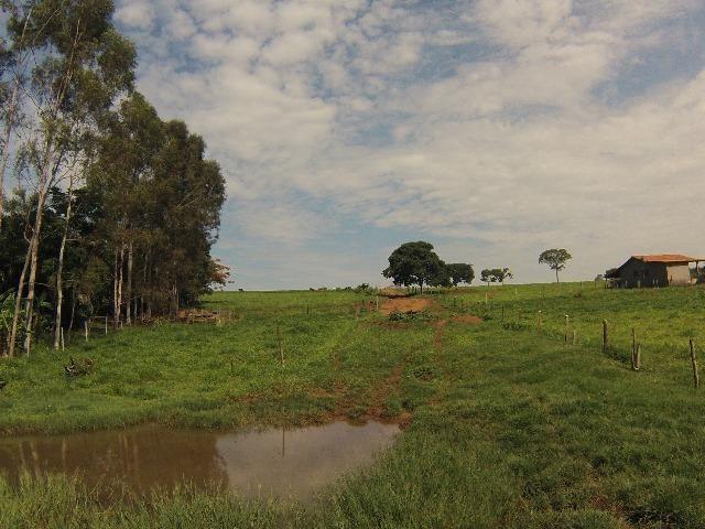 Fazenda Goianira 8 alqueres - Foto 7