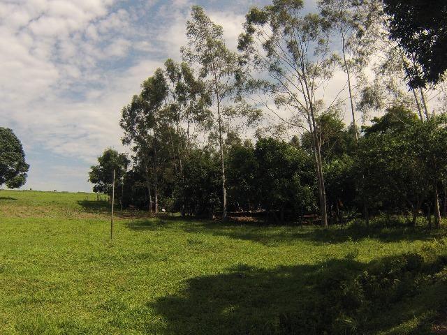 Fazenda Goianira 8 alqueres - Foto 6