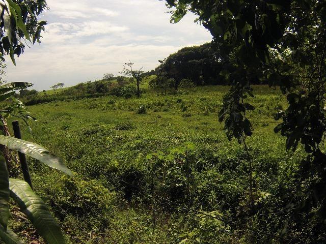 Fazenda Goianira 8 alqueres - Foto 2