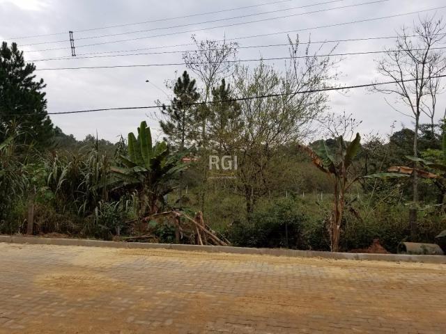 Terreno à venda em Centro, Nova santa rita cod:BD3719 - Foto 5