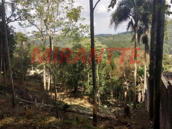 Terreno à venda em Serra da cantareira, São paulo cod:316802 - Foto 2