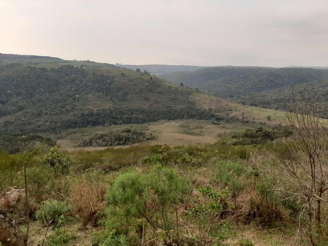 Fazenda de 100 Alqueires. 70 de capoeira - 16 km da Colônia Vitória. Guarapuava PR - Foto 19