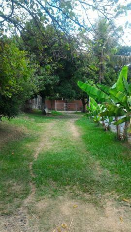 Sítio para alugar em Loteamento auferville, Sao jose do rio preto cod:L7151 - Foto 17