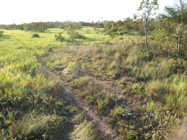 245 Ha Pecuaria Piscicultura Lazer Beira Rio Proximo Cuiaba Santo Antonio MT - Foto 2
