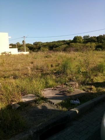 Terreno atrás do Zaffari Hípica - Foto 2