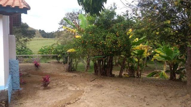 Fazenda em Silveiras - Cód 1505 - Foto 16