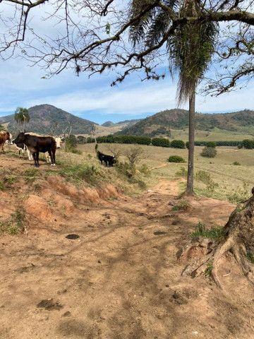 Maravilhosa Fazenda São Bento do Sapucaí - SP - Foto 9