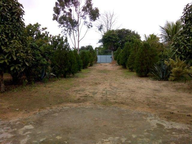Sítio em São José (Distrito de Maria Quitéria) - Foto 3