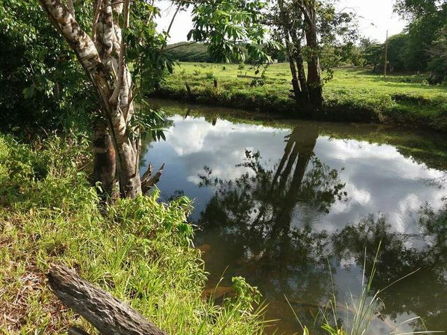 Vendo lotes de terrenos lindos de frente para Rio Flexal
