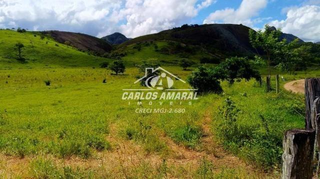 Fazenda à venda, , zona rural - carlos chagas/mg - Foto 3