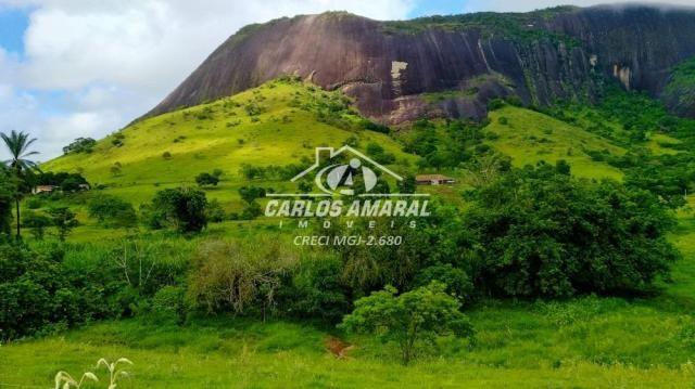 Fazenda à venda, , zona rural - carlos chagas/mg - Foto 18