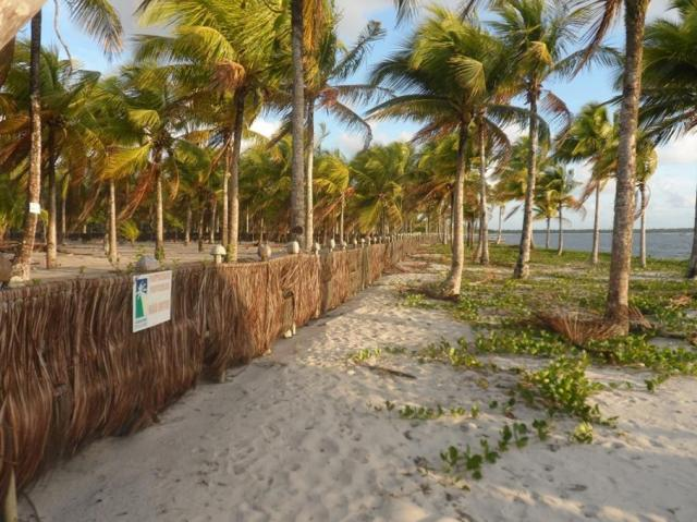 Terreno à venda em Centro, Camamu cod:55612 - Foto 8