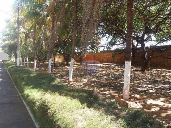 Terreno para locação em avenida padre cícero - Foto 6