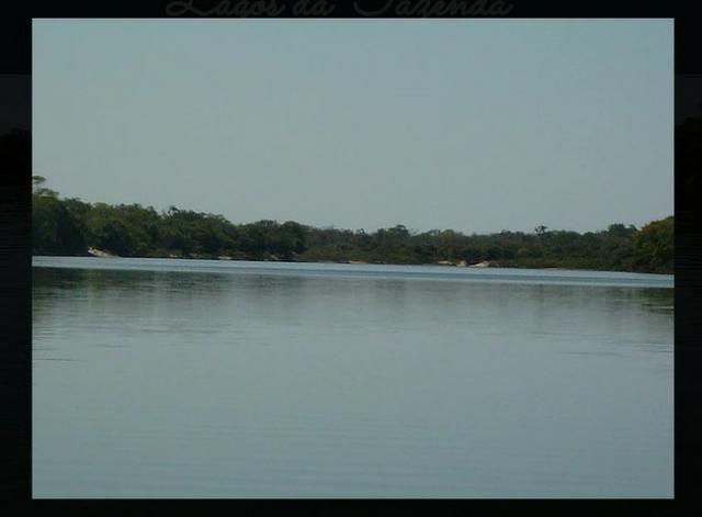 Fazenda de 10.257 hectares em Cocalinho - MT diivisa com Goias - Foto 2
