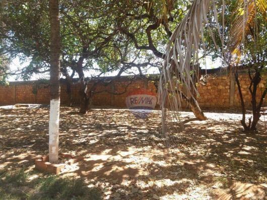 Terreno para locação em avenida padre cícero - Foto 7