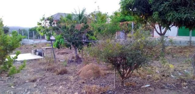 Chácara com casa sede, árvores frutíferas, 2.500m², 40 minutos de Taguatinga! - Foto 11