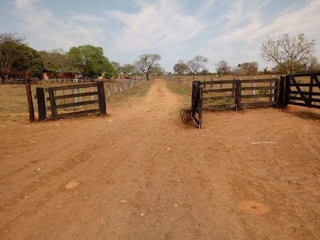 Fazenda 1.100 hectares Lago do Manso na Água Fria - Foto 10