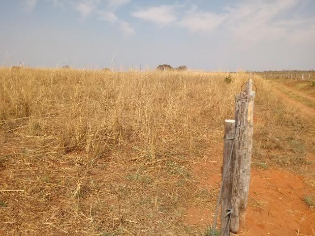 Fazenda 1.100 hectares Lago do Manso na Água Fria - Foto 12