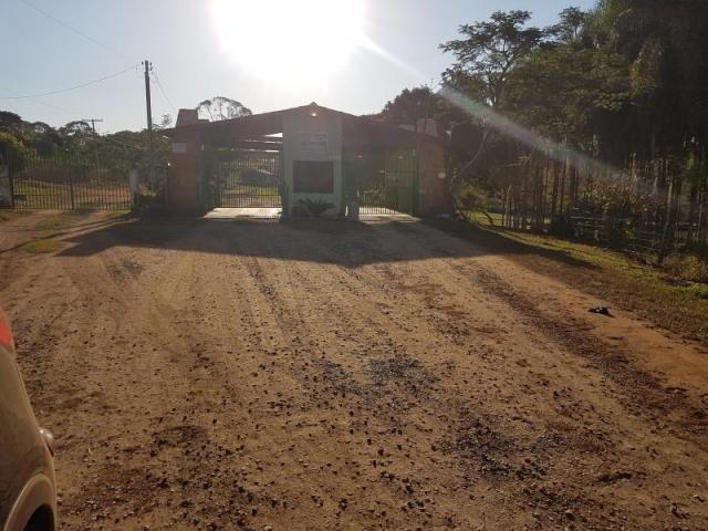 Chácara à venda com 3 dormitórios em Zona rural, Santa barbara de goias cod:em518 - Foto 4