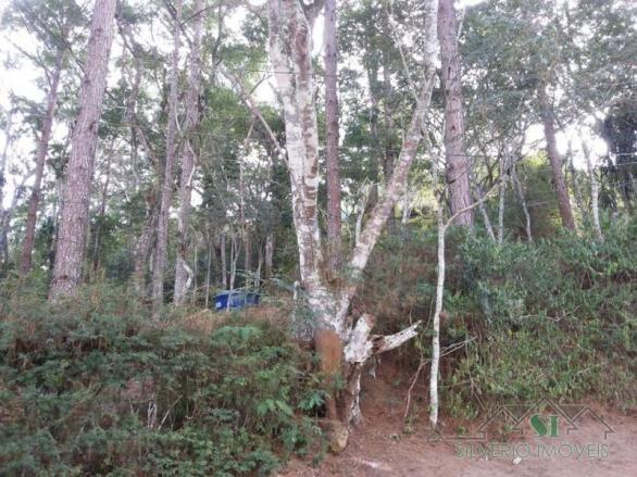 Terreno à venda em Itaipava, Petrópolis cod:2060 - Foto 8