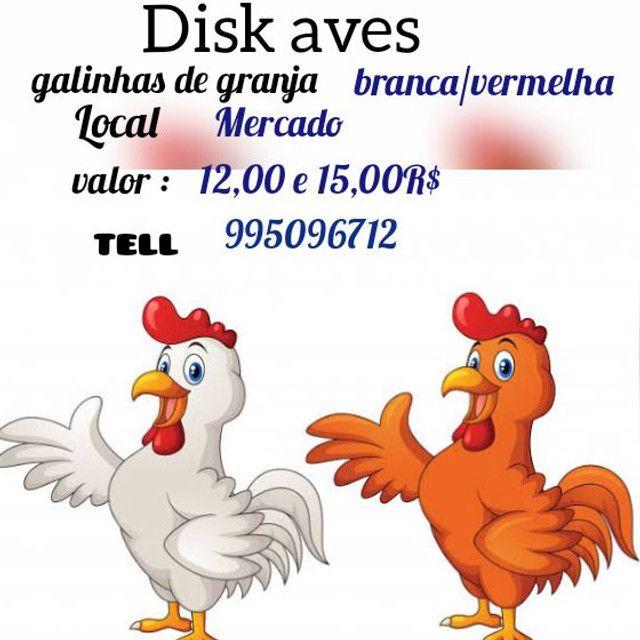 Disk aves