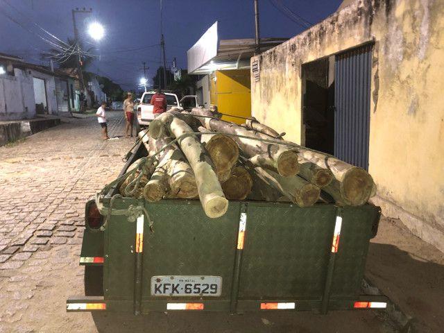 24 troncos de madeira de eucalipto  - Foto 4