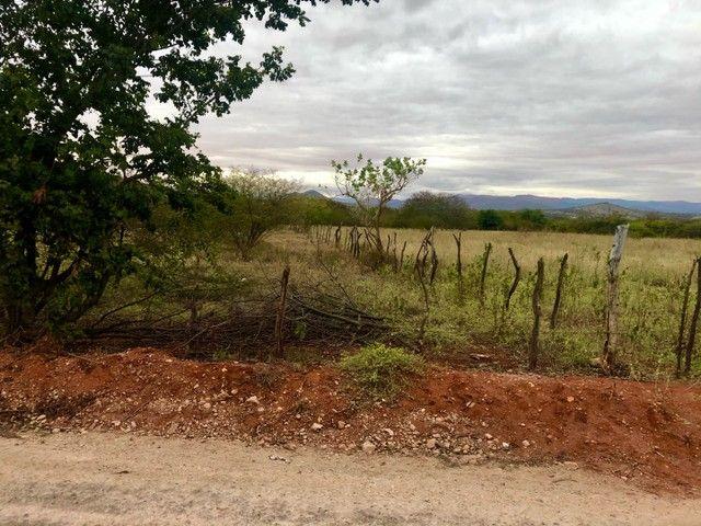 Vendo terreno próximo a pedra preta - Foto 4