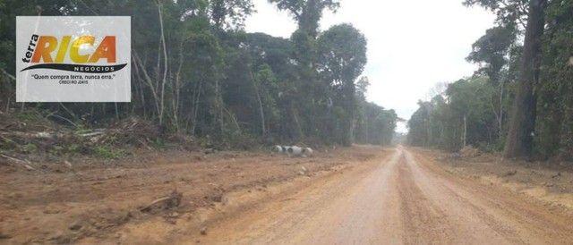 Fazenda à venda, com 750 hectares na Área Rural de Porto Velho/RO - Foto 11