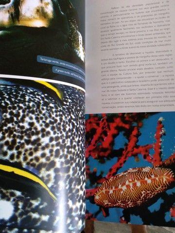 Excelente Livro ( uma enciclopedia). - Foto 2