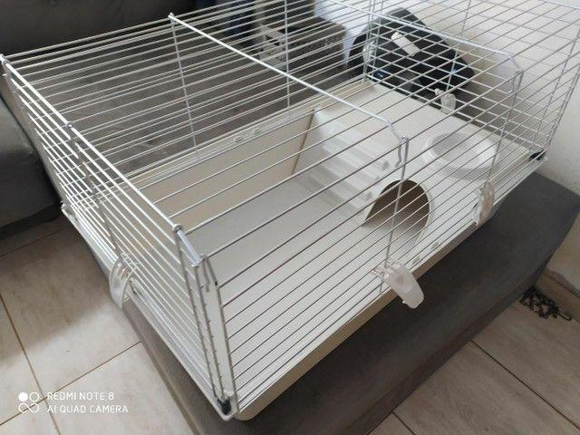 Gaiola grande para roedores - Foto 3