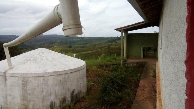 Fazenda 100000 m² - Foto 5