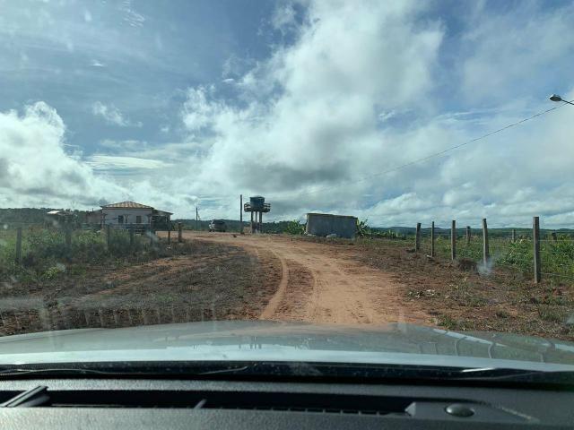Vendo Fazenda de Gado em Grajaú - Foto 4