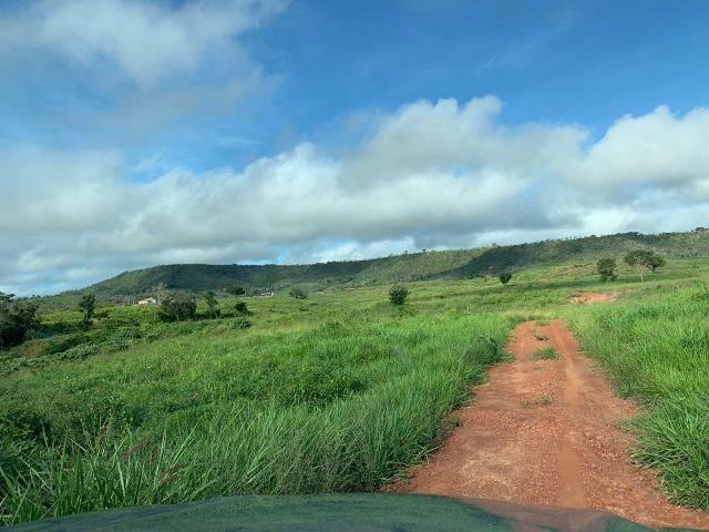 Vendo Fazenda de Gado em Grajaú - Foto 5