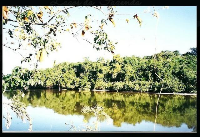 Fazenda de 10.257 hectares em Cocalinho - MT diivisa com Goias - Foto 8