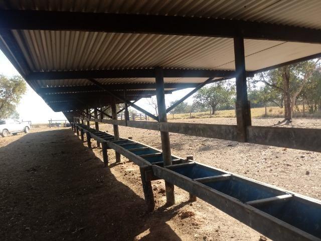 Fazenda 1455 hectares, em Acorizal, formado 900 hec - Foto 2