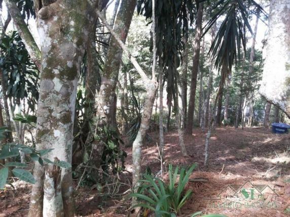 Terreno à venda em Itaipava, Petrópolis cod:2060 - Foto 2