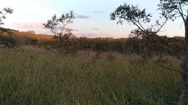 Sitio 20,10 hectares - Foto 8
