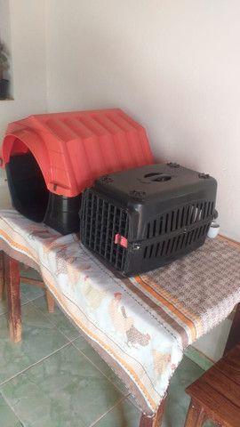 Trasporte de cachorro - Foto 2