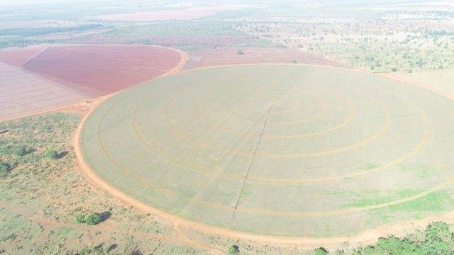 Fazenda com 695ha pra irrigação, na Regiao de João Pinheiro!! - Foto 5