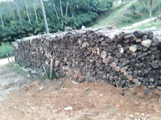 Madeira  - Foto 3