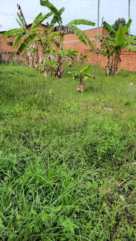 Terreno no belo jardim 2 na rua do quero mais  - Foto 4