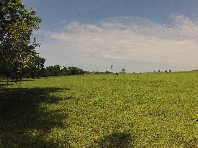 Fazenda Goianira 8 alqueres - Foto 16