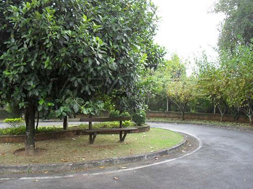 Terreno à venda em Serra da cantareira, São paulo cod:139366 - Foto 2