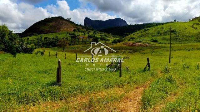Fazenda à venda, , zona rural - carlos chagas/mg