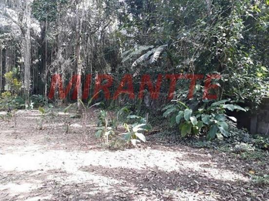 Terreno à venda em Centro, Ubatuba cod:309955 - Foto 2