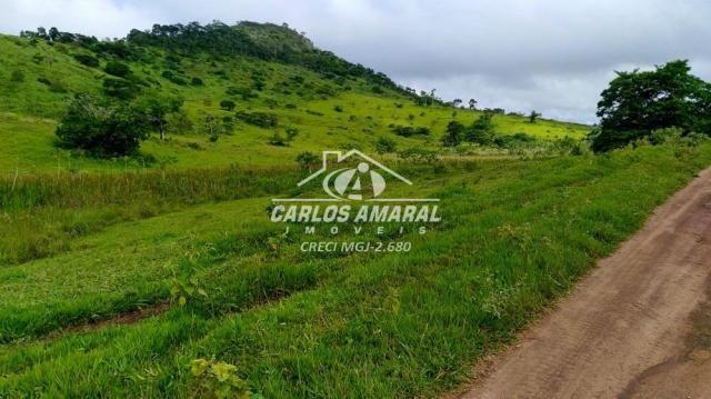 Fazenda à venda, , zona rural - carlos chagas/mg - Foto 14