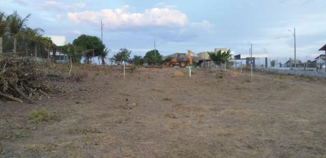 Chácara com casa sede, árvores frutíferas, 2.500m², 40 minutos de Taguatinga! - Foto 7