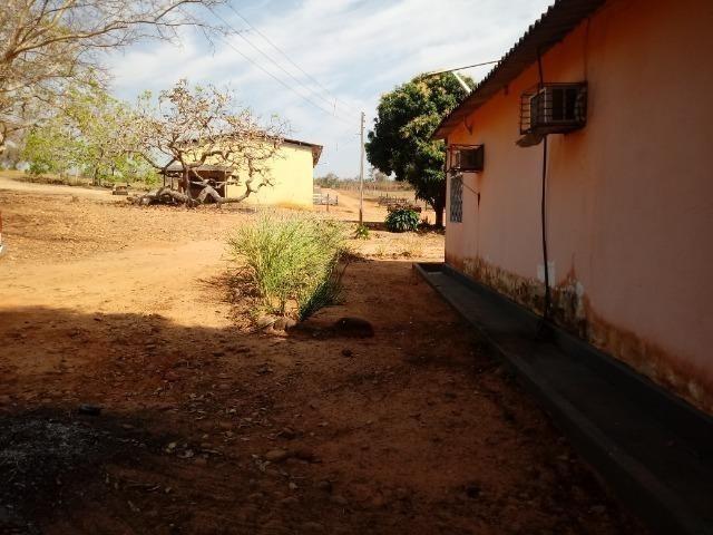 Fazenda 1.100 hectares Lago do Manso na Água Fria - Foto 7