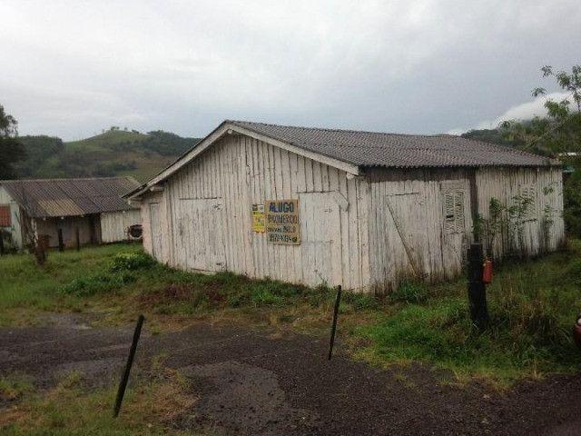 Sítio em Santo Antônio - Terreno Rural com Casa na RS 474 - Peça o Video - Foto 3