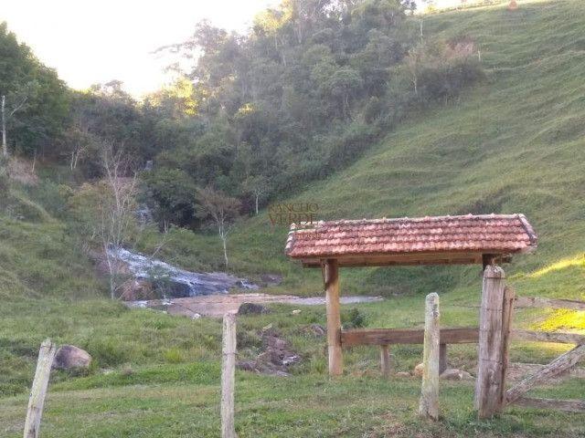 Fazenda em Silveiras - Cód 1505 - Foto 9